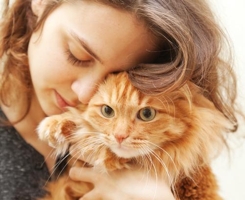 Woman holding a fluffy cat - Air Conditioning Gilbert AZ