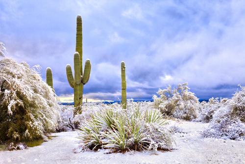 What Temperature Should Set Installation Scottsdale